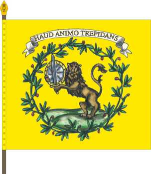 File:Grote Infantry Regimental Flag.jpg